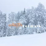 snowy winter scene with snow covered conifer trees in the background and winter script in orange and holiday scipt in white block letters overlaid