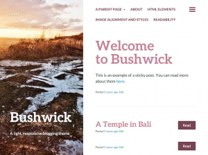 Bushwick and Fastr themes added.