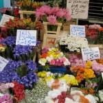 Flower Market, London UK
